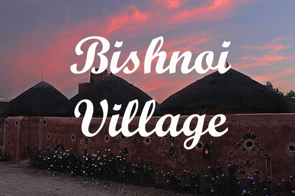 Bishnoi-village-hut - Tour Planner Blog