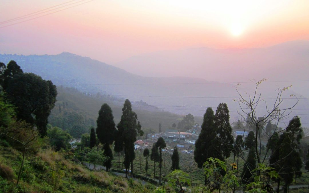 Weekend Trip To Lepchajagat and Singell Tea Estate