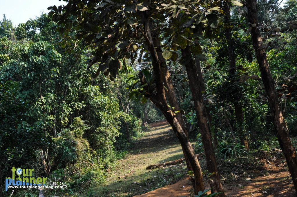 Kuldiha Forest - A Weekend Destination in Orissa-tourplannerblog