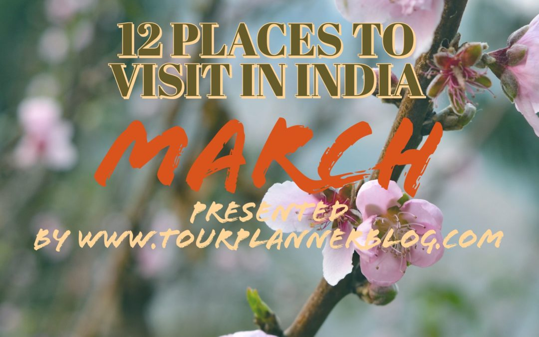 Top 12 Places to Visit in India in March