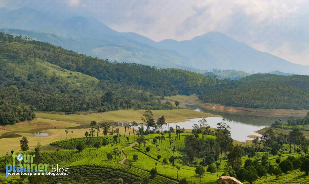 Places to visit in march - munnar