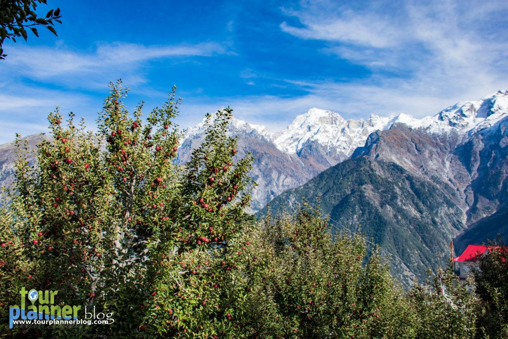 Kalpa in Kinnaur Valley