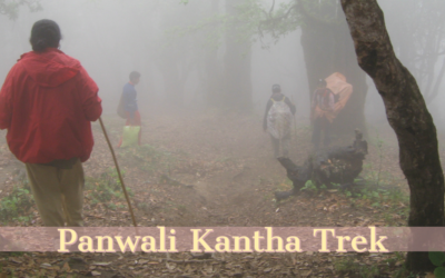 A Travel Story on Panwali Kantha Trek