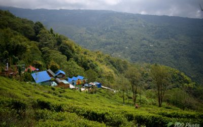 Kalej Valley – A Nature Lover's Paradise in Darjeeling Himalaya