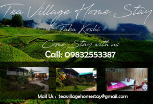 tea village homestay tabakoshi